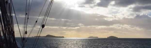 30. März, Prion Island und Walfängerstation Prince Olav Harbour
