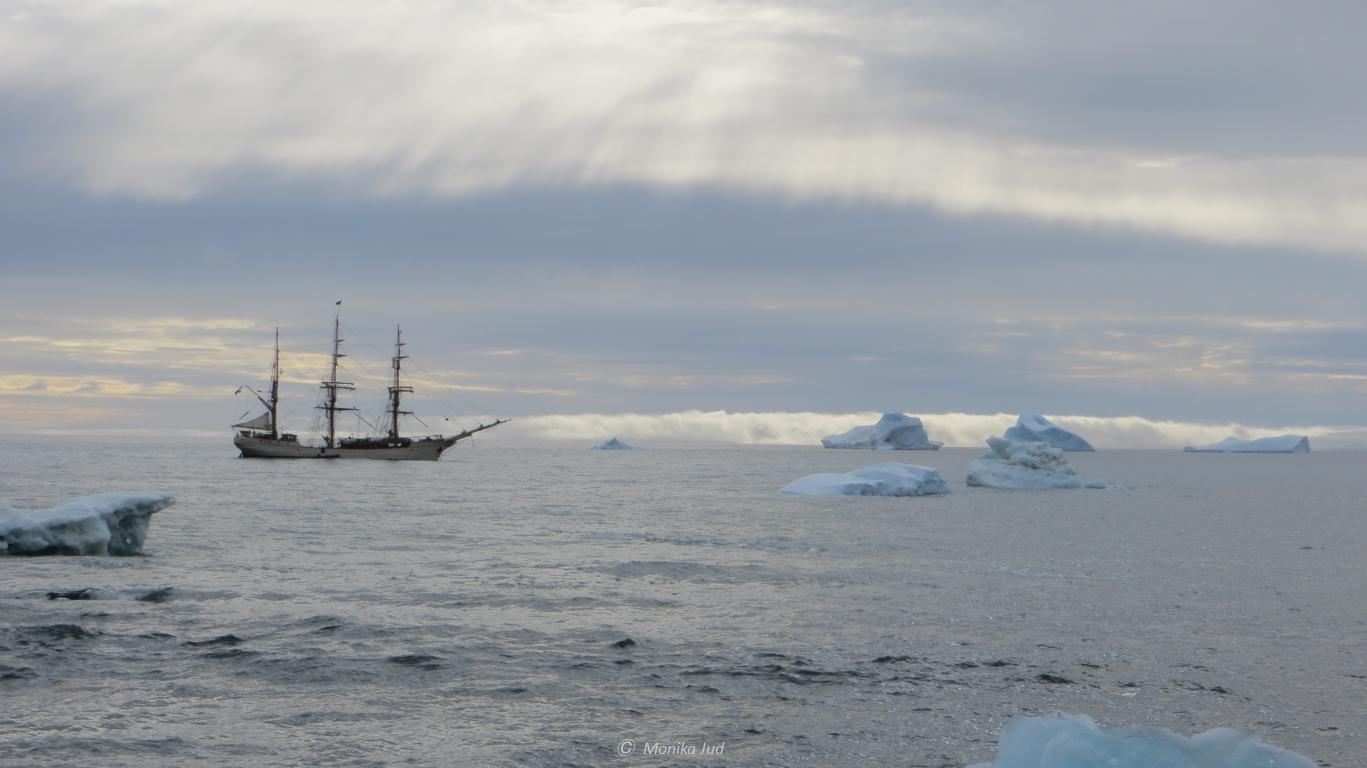 Bark Europa vor Eisschollen im Weddell-Meer