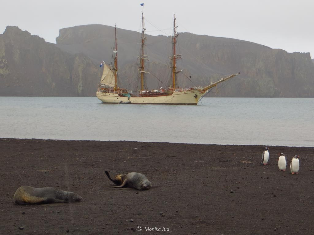 Bark Europa in der Whalers Bay auf Deception Island