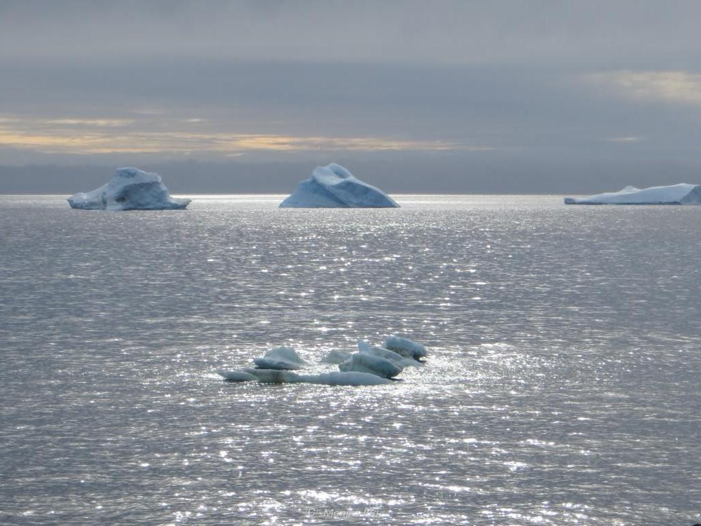 Eisberge im Sonnenlicht im Weddell-Meer