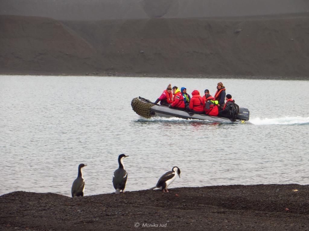 Schlauchbootlandung auf Deception Island