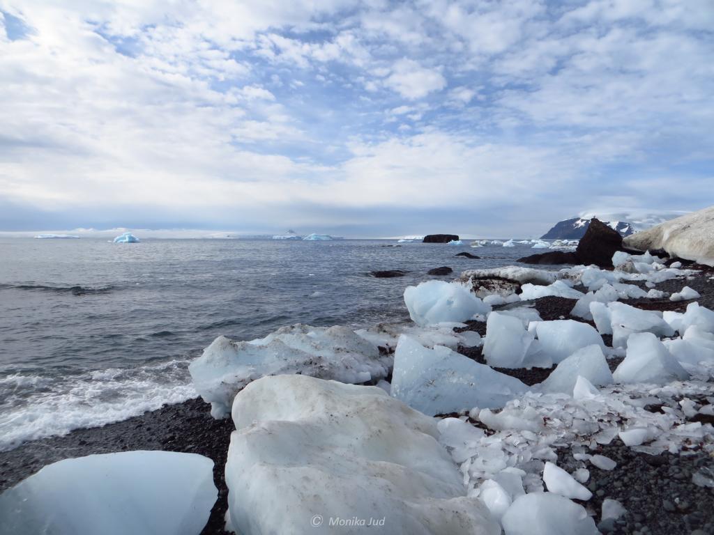 der Strand von Brown Bluff: mit Eisschollen gespickt