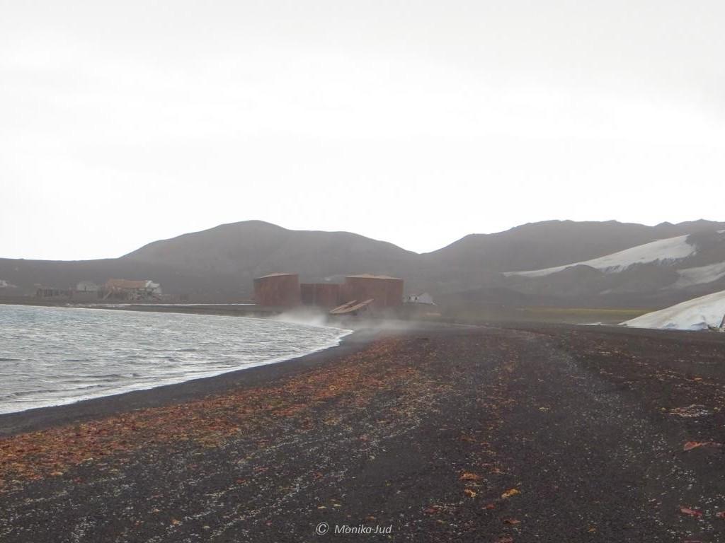 alte Walfängerstation auf Deception Island, Whalers Bay