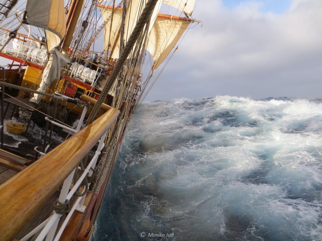 Antarktis unter Segeln - auf und ab in rauer See
