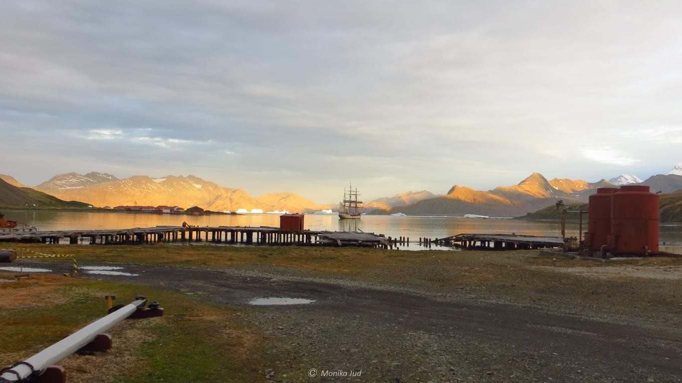 Bucht von Grytviken bei Sonnenuntergang