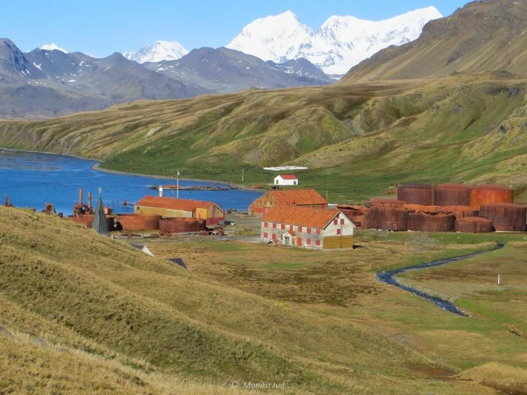 Ankunft in der Bucht von Grytviken