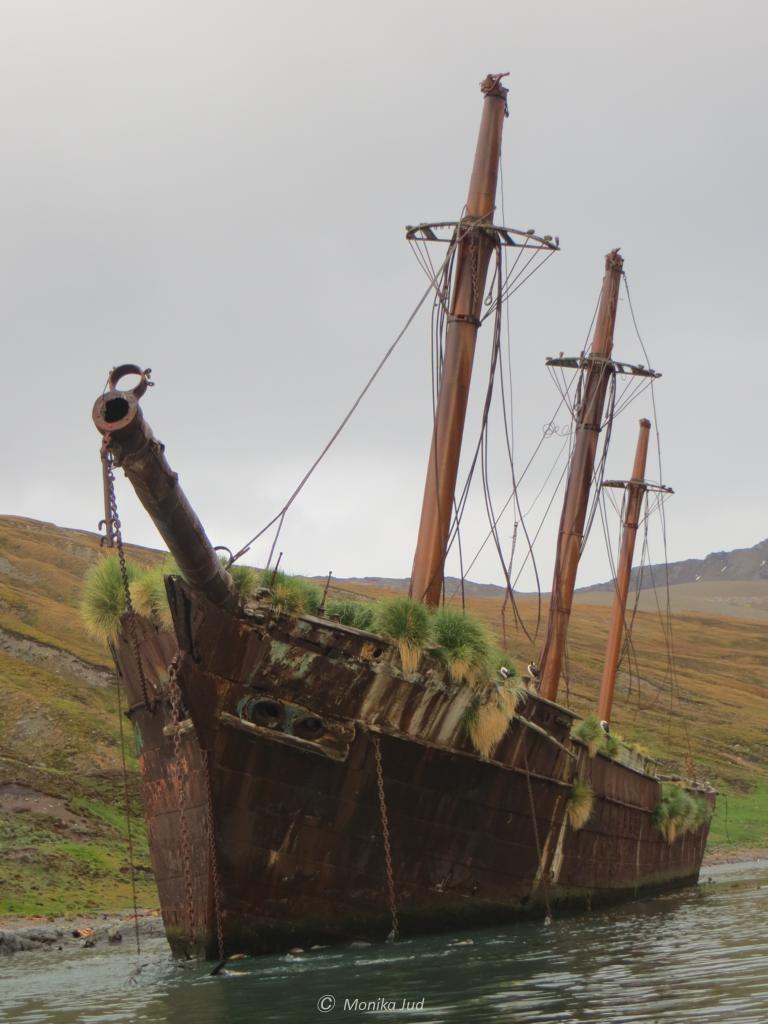 Dreimaster-Wrack in der Bucht von Ocean Harbour - es ruht hier seit über 100 Jahren