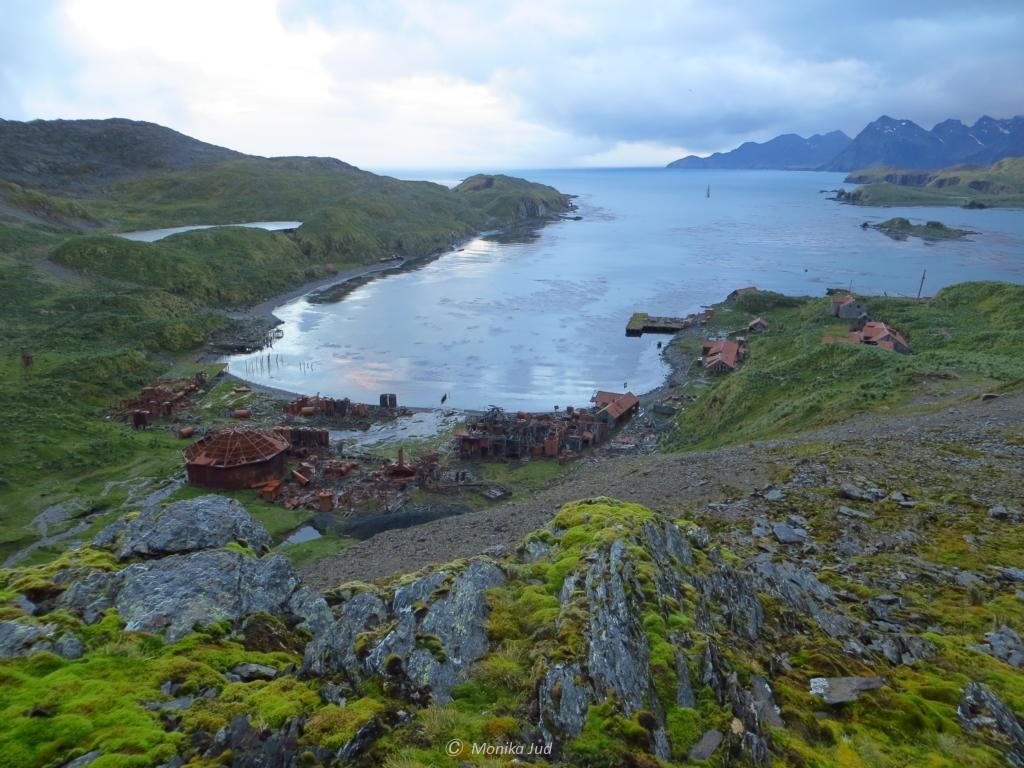 Blick über Prince Olaf Harbour