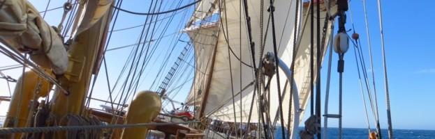 22. bis 29. März , Scotia Sea, Überfahrt nach Südgeorgien