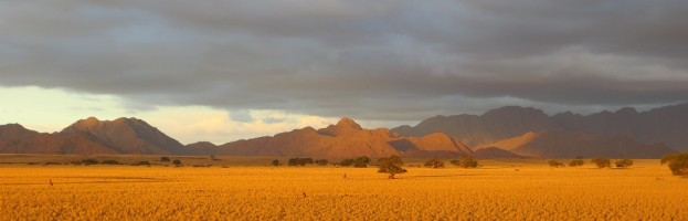 Viel Glück Namibia Favorites!